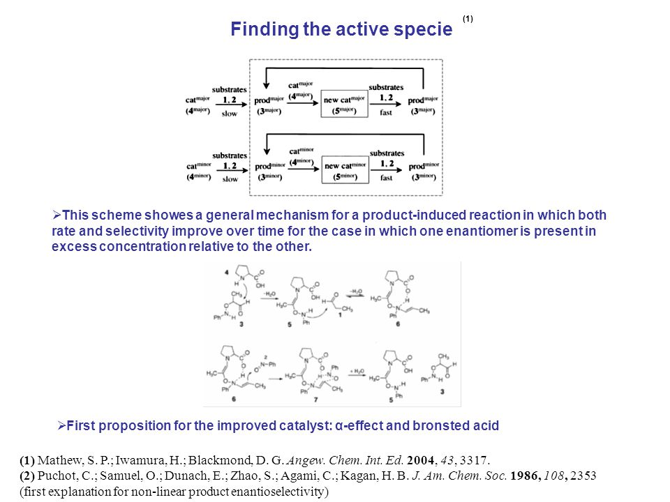 Finding the active specie (1) (1) Mathew, S. P.; Iwamura, H.; Blackmond, D.