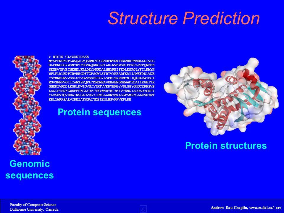 Faculty of Computer Science Dalhousie University, Canada Andrew Rau-Chaplin, www.cs.dal.ca/~arc Structure Prediction Genomic sequences > RICIN GLYCOSIDASE MYSFPNSFRFGWSQAGFQSEMGTPGSEDPNTDWYKWVHDPENMAAGLVSG DLPENGPGYWGNYKTFHDNAQKMGLKIARLNVEWSRIFPNPLPRPQNFDE SKQDVTEVEINENELKRLDEYANKDALNHYREIFKDLKSRGLYFILNMYH WPLPLWLHDPIRVRRGDFTGPSGWLSTRTVYEFARFSAYIAWKFDDLVDE YSTMNEPNVVGGLGYVGVKSGFPPGYLSFELSRRHMYNIIQAHARAYDGI KSVSKKPVGIIYANSSFQPLTDKDMEAVEMAENDNRWWFFDAIIRGEITR GNEKIVRDDLKGRLDWIGVNYYTRTVVKRTEKGYVSLGGYGHGCERNSVS LAGLPTSDFGWEFFPEGLYDVLTKYWNRYHLYMYVTENGIADDADYQRPY YLVSHVYQVHRAINSGADVRGYLHWSLADNYEWASGFSMRFGLLKVDYNT KRLYWRPSALVYREIATNGAITDEIEHLNSVPPVKPLRH Protein sequences Protein structures