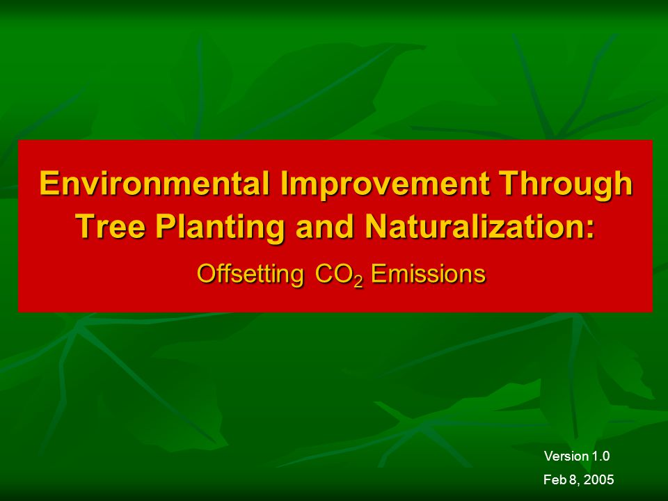Environmental Improvement Through Tree Planting and Naturalization: Offsetting CO 2 Emissions Version 1.0 Feb 8, 2005