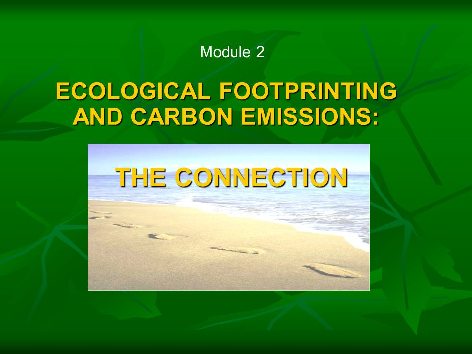 ECOLOGICAL FOOTPRINTING AND CARBON EMISSIONS: Module 2 THE CONNECTION