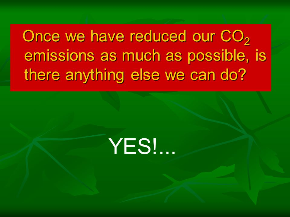 Once we have reduced our CO 2 emissions as much as possible, is there anything else we can do.