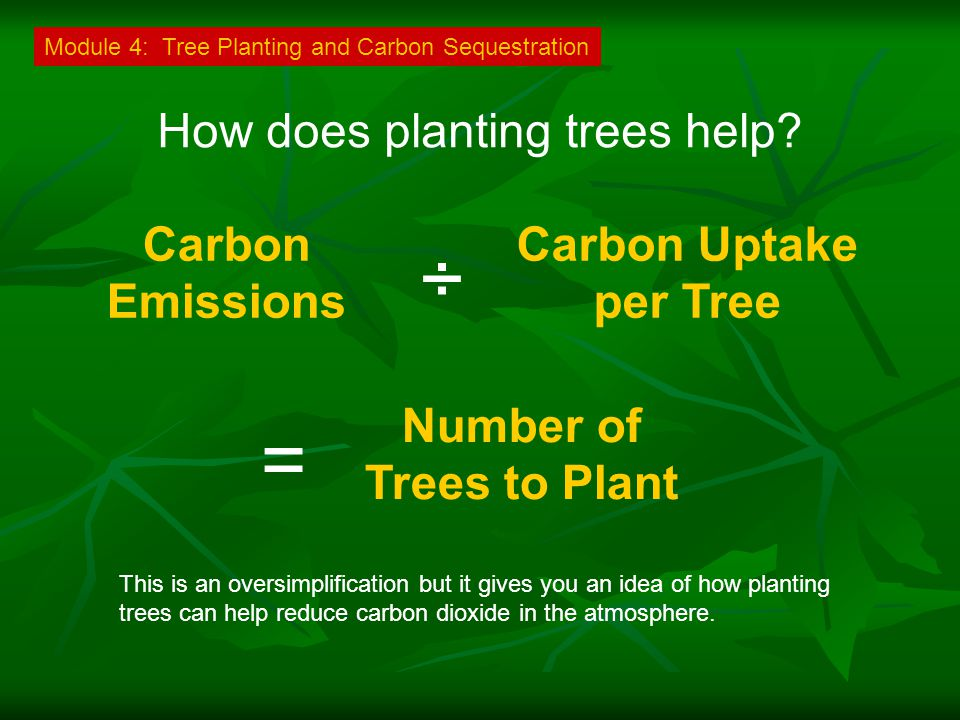 How does planting trees help.