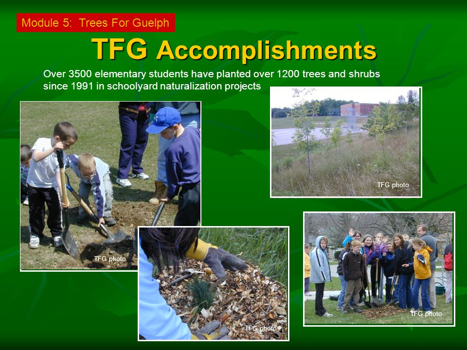 TFG Accomplishments Over 3500 elementary students have planted over 1200 trees and shrubs since 1991 in schoolyard naturalization projects Module 5: Trees For Guelph TFG photo