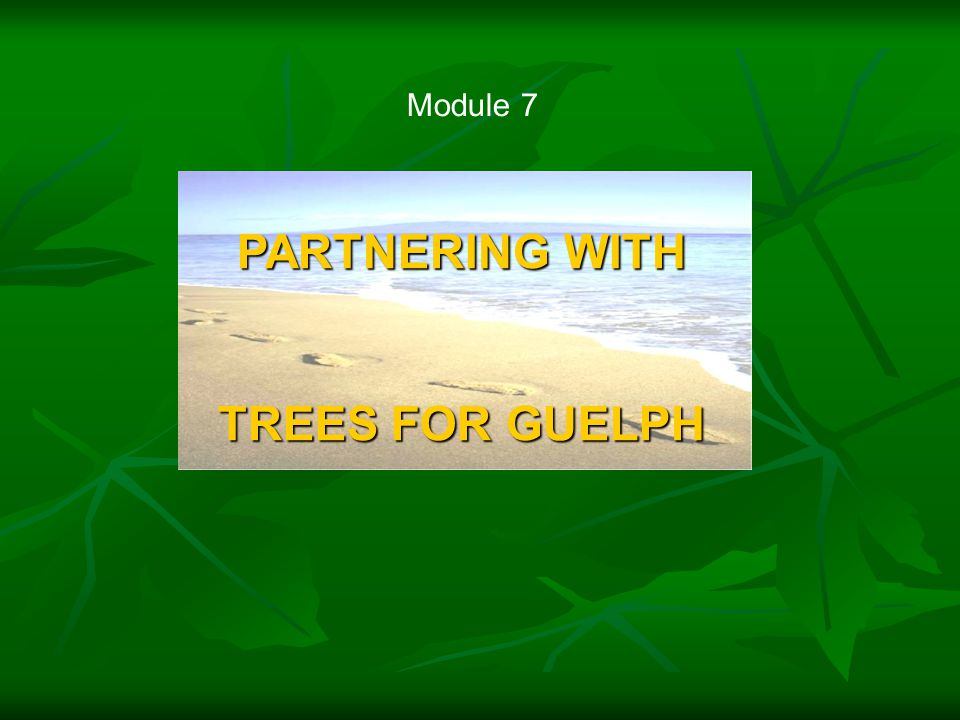 Module 7 PARTNERING WITH TREES FOR GUELPH