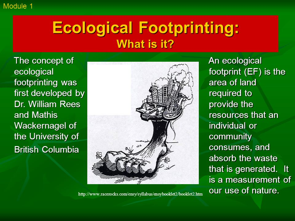 Ecological Footprinting: What is it.