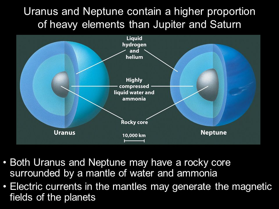 Uranus and Neptune contain a higher proportion of heavy elements than Jupiter and Saturn Both Uranus and Neptune may have a rocky core surrounded by a