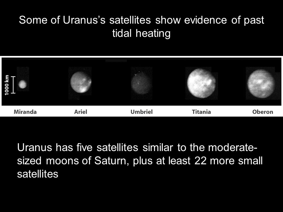 Some of Uranus's satellites show evidence of past tidal heating Uranus has five satellites similar to the moderate- sized moons of Saturn, plus at lea