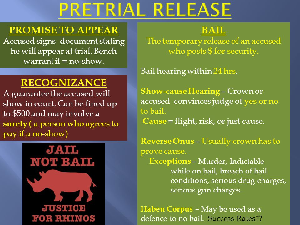 Arrest & not released by police with Promise to Appear First Appearance in Court (arraignment – read charges and enter plea) Released while awaiting trial OR release denied Disclosur e of evidence Plea negotiatio nOR wait for trial