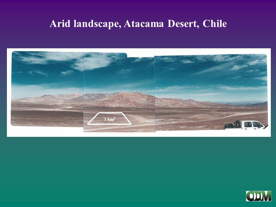 Arid landscape, Atacama Desert, Chile 1 km 2
