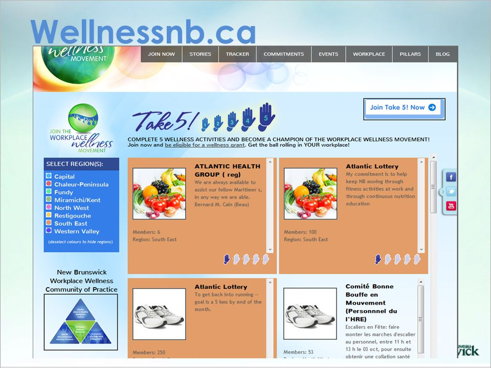 Wellnessnb.ca
