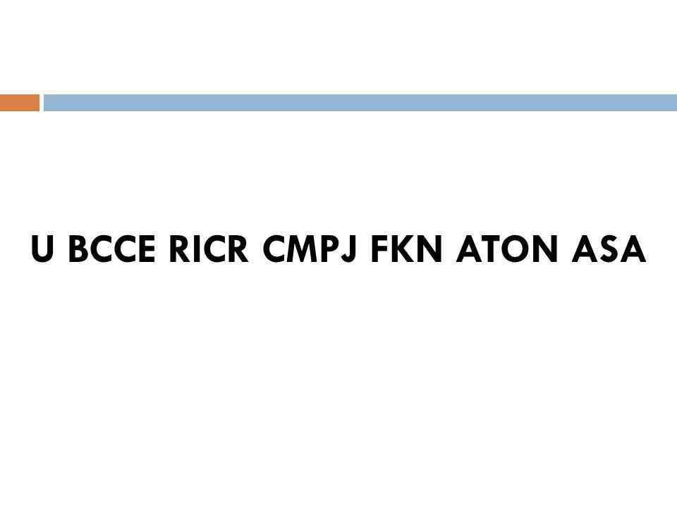U BCCE RICR CMPJ FKN ATON ASA