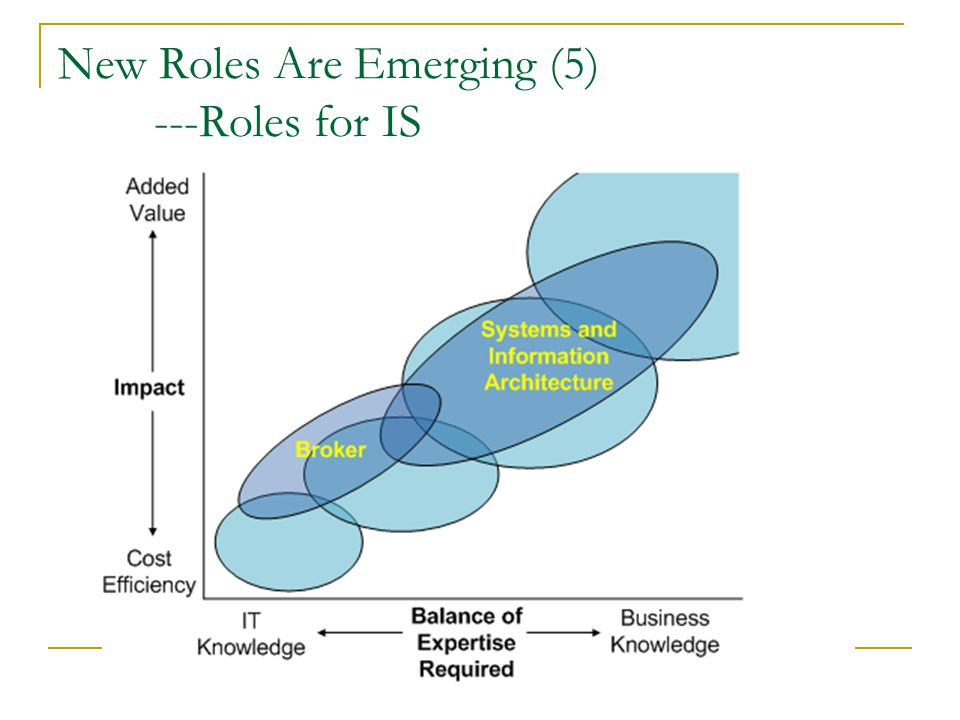 New Roles Are Emerging (5) ---Roles for IS