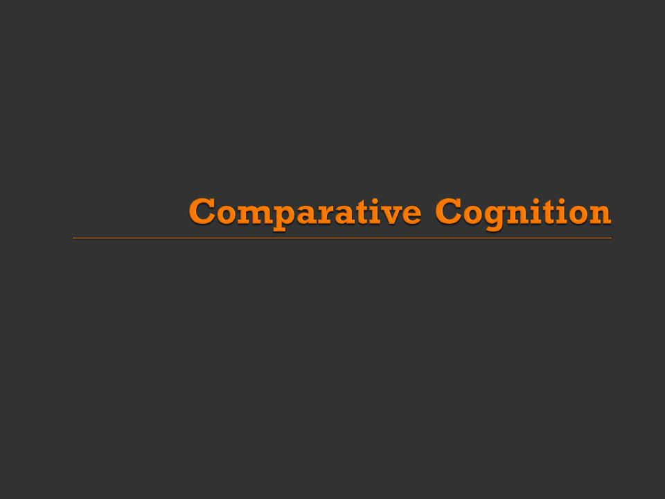  Comparative cognition is: A comparison of mental abilities of species Cognitive abilities and capacities  e.g.