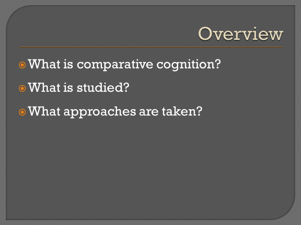  What is comparative cognition  What is studied  What approaches are taken