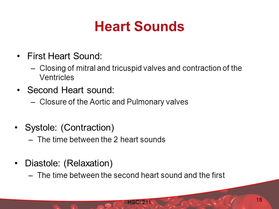 HSCI 211 16 Heart Sounds First Heart Sound: –Closing of mitral and tricuspid valves and contraction of the Ventricles Second Heart sound: –Closure of