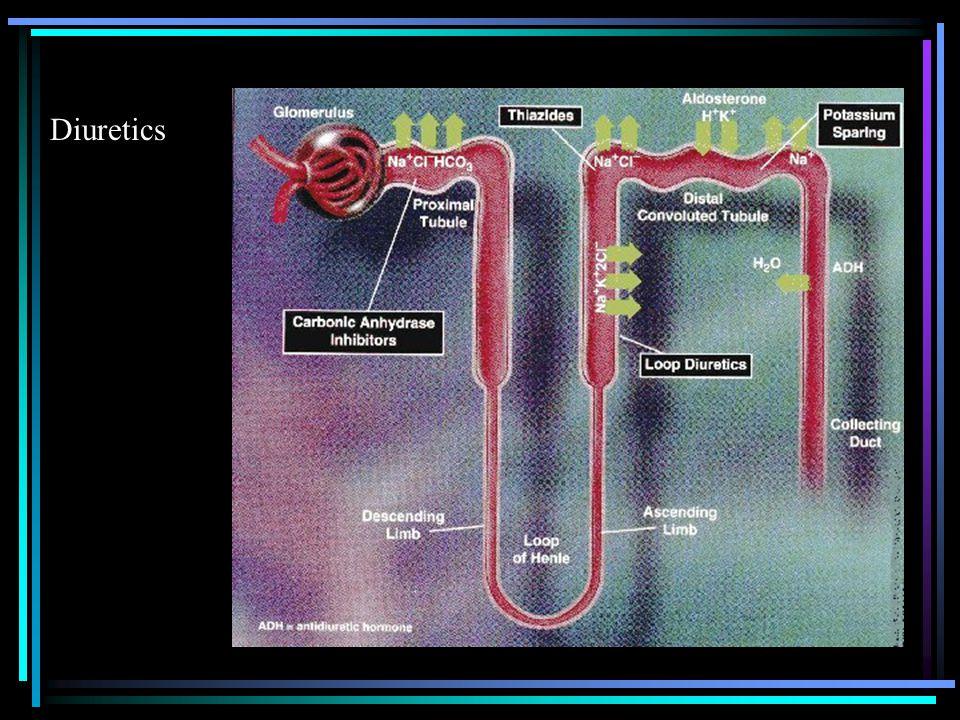 ACE Inhibitors GenericBrand BenazeprilLotensin CaptoprilCapoten EnalaprilVasotec FosinoprilMonopril LisinoprilPrinivil MoexiprilUnivasc PerindoprilAceon QuinaprilAccupril RamiprilAltace TrandolaprilMavik
