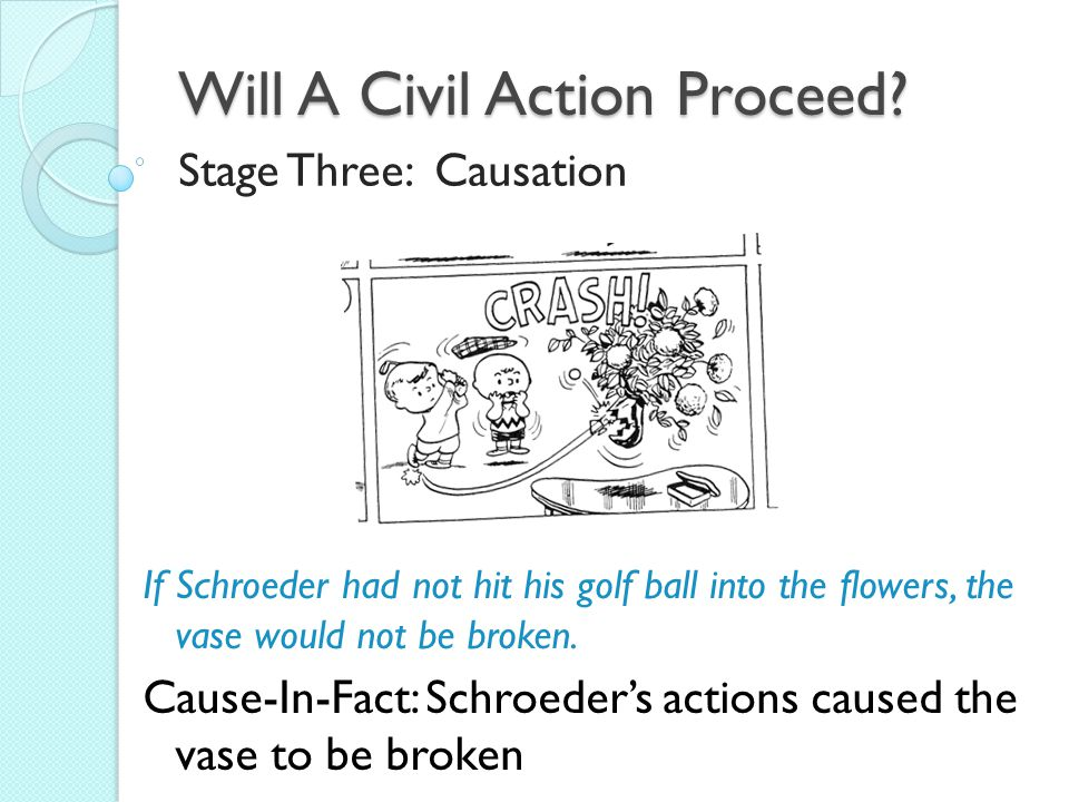 Will A Civil Action Proceed.