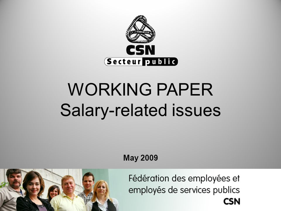 WORKING PAPER Salary-related issues May 2009