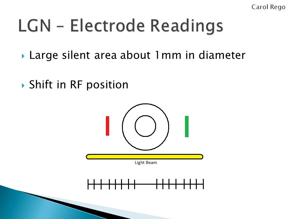  Large silent area about 1mm in diameter  Shift in RF position Carol Rego