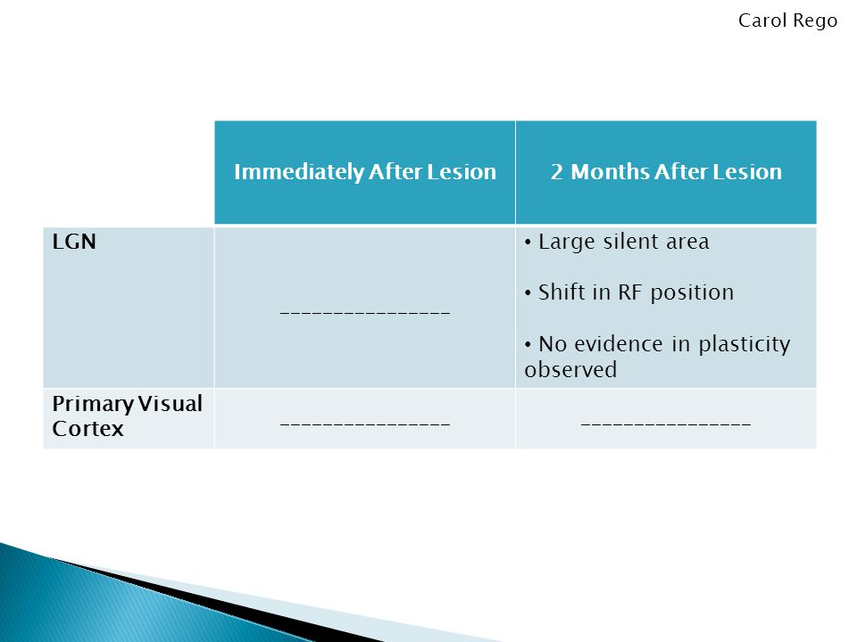 Immediately After Lesion2 Months After Lesion LGN ________________ Large silent area Shift in RF position No evidence in plasticity observed Primary Visual Cortex ________________ Carol Rego