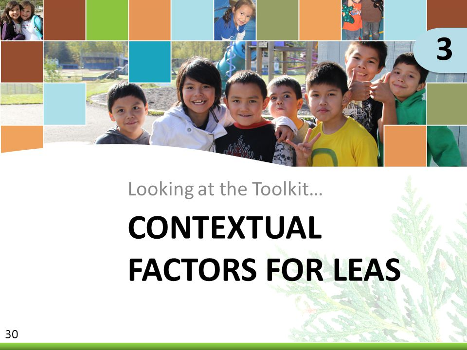CONTEXTUAL FACTORS FOR LEAS Looking at the Toolkit… 3 30