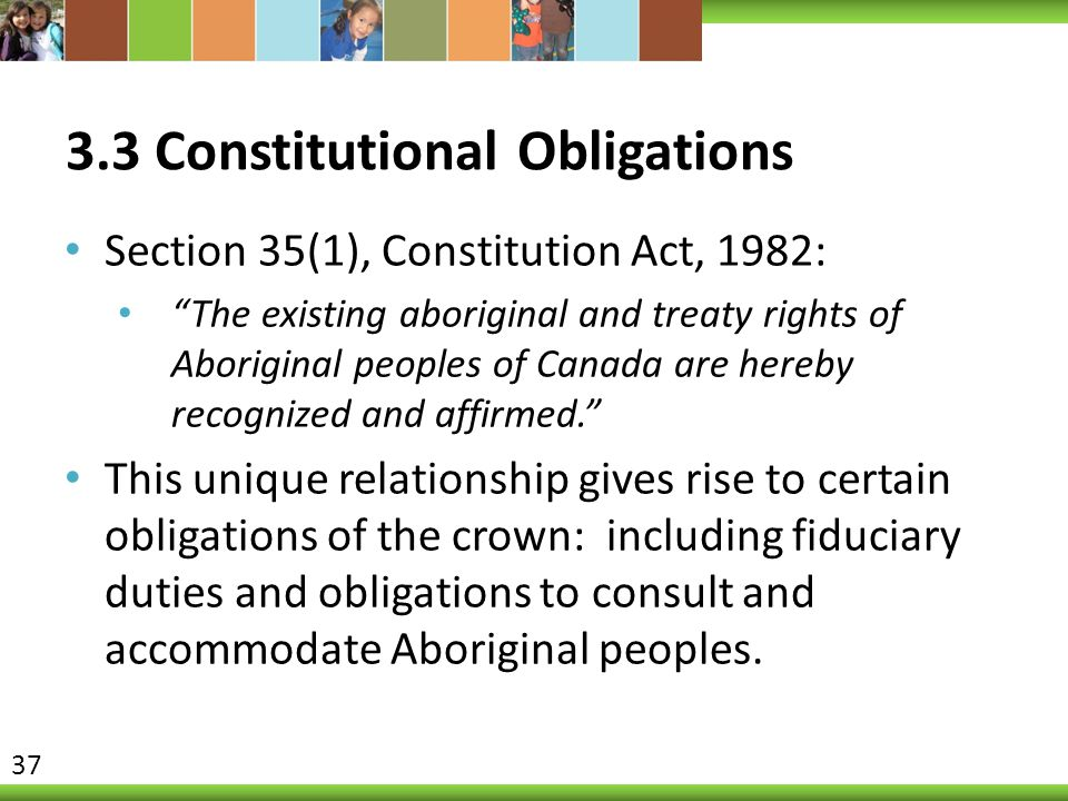 """3.3 Constitutional Obligations Section 35(1), Constitution Act, 1982: """"The existing aboriginal and treaty rights of Aboriginal peoples of Canada are h"""