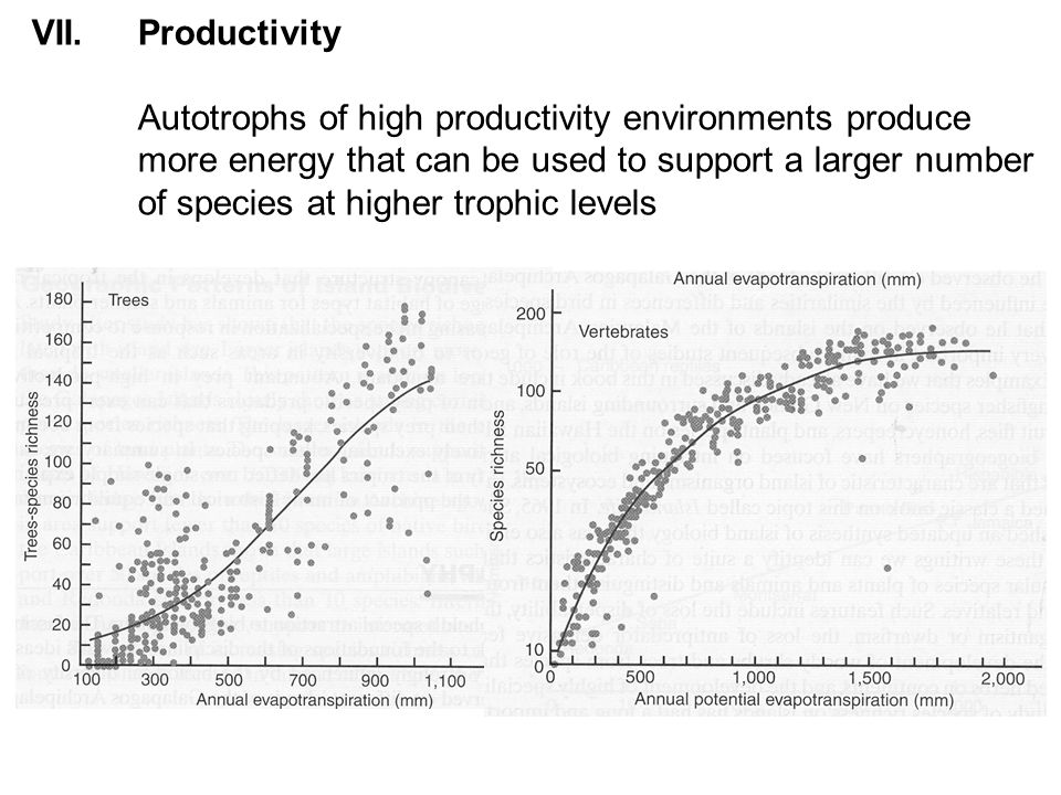 VII.Productivity Autotrophs of high productivity environments produce more energy that can be used to support a larger number of species at higher trophic levels