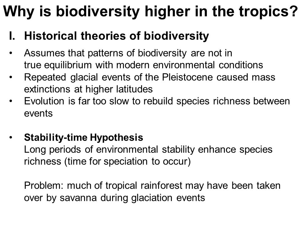 Why is biodiversity higher in the tropics.