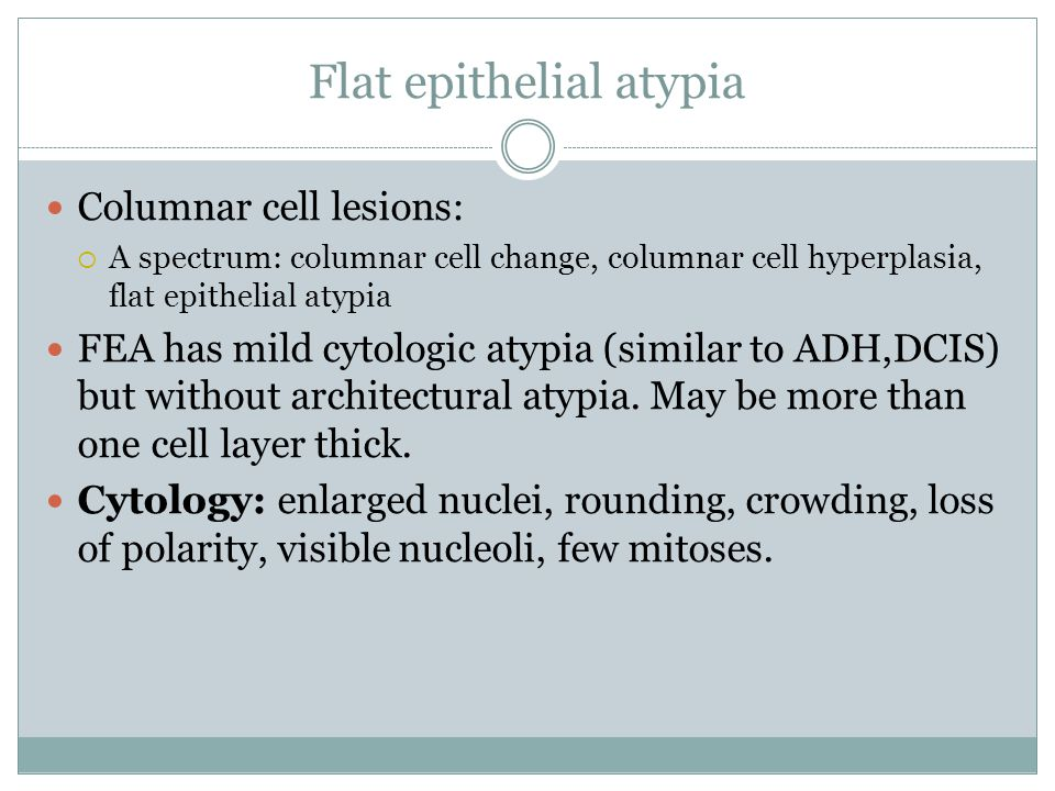 Flat epithelial atypia Columnar cell lesions:  A spectrum: columnar cell change, columnar cell hyperplasia, flat epithelial atypia FEA has mild cytologic atypia (similar to ADH,DCIS) but without architectural atypia.