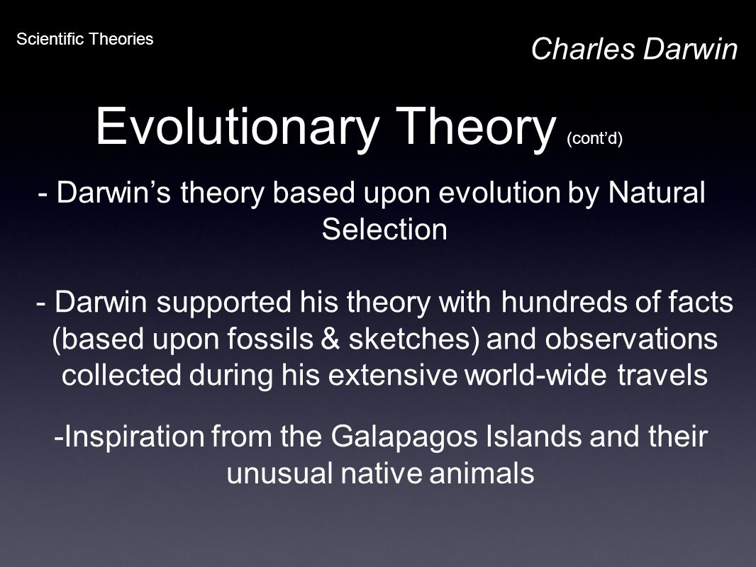 Evolutionary Theory (cont'd) Charles Darwin Scientific Theories - Darwin's theory based upon evolution by Natural Selection - Darwin supported his the