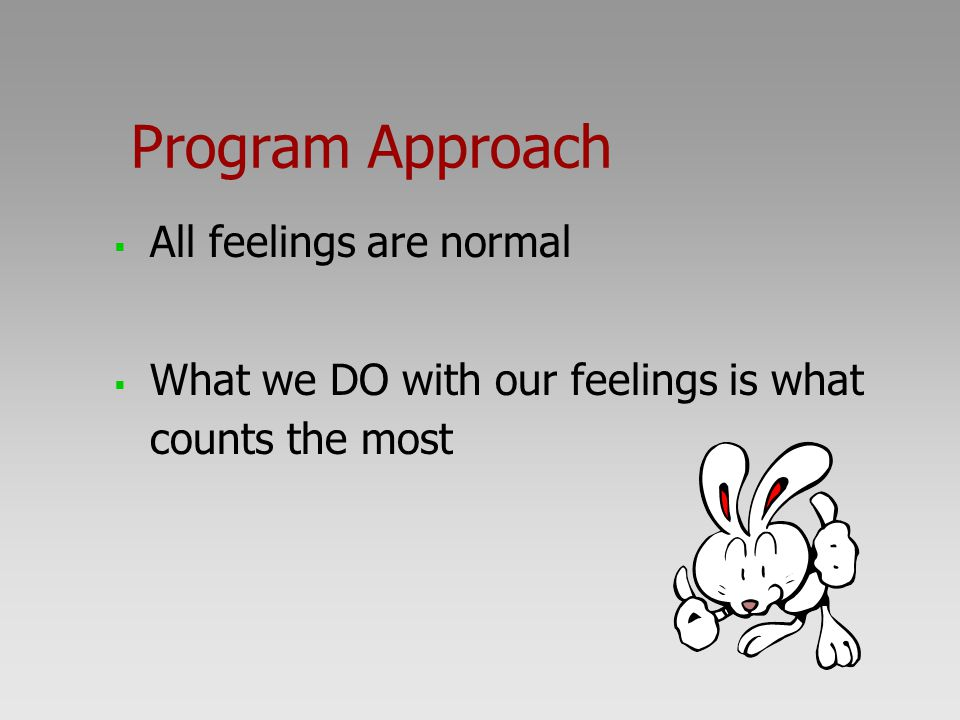Program Approach  All feelings are normal  What we DO with our feelings is what counts the most