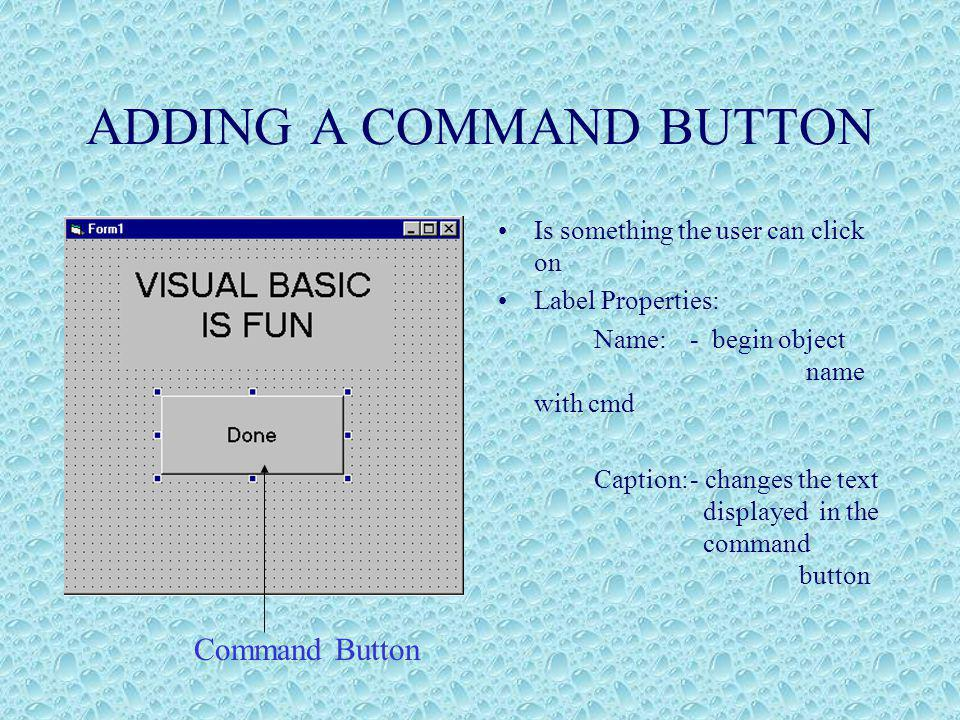 ADDING A COMMAND BUTTON Is something the user can click on Label Properties: Name: - begin object name with cmd Caption:- changes the text displayed in the command button Command Button
