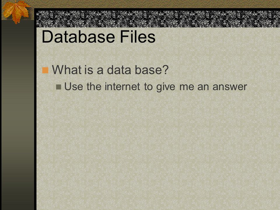 Database Files What is a data base Use the internet to give me an answer