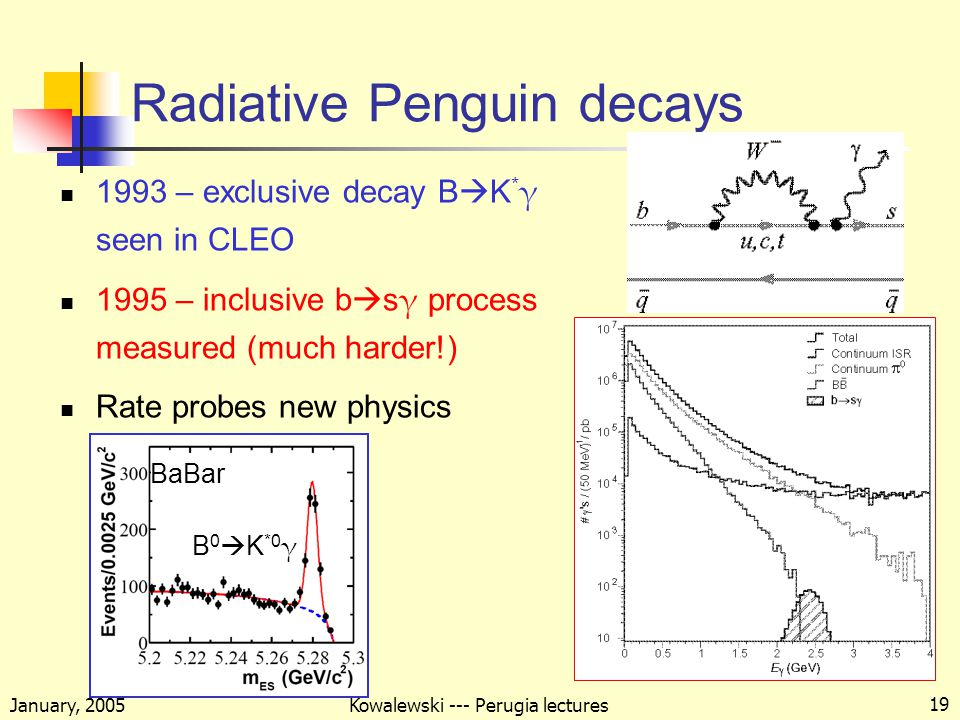 January, 2005 Kowalewski --- Perugia lectures 19 Radiative Penguin decays 1993 – exclusive decay B  K * γ seen in CLEO 1995 – inclusive b  s γ process measured (much harder!) Rate probes new physics BaBar B 0  K *0 γ