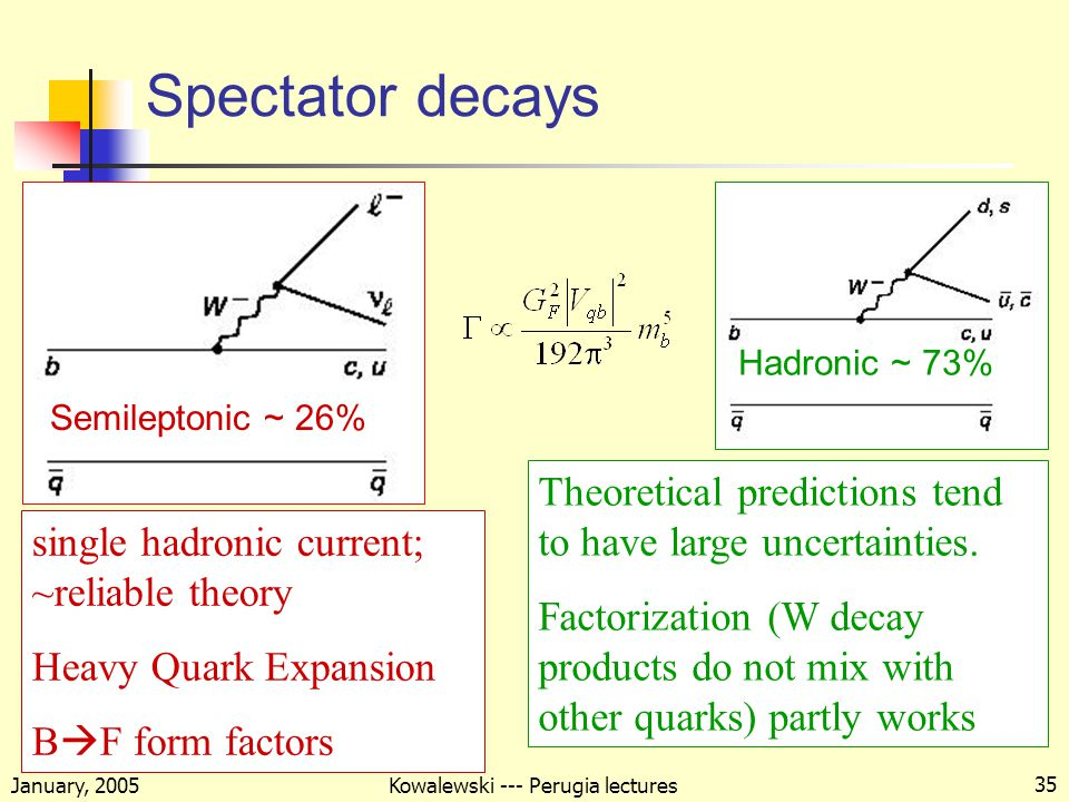 January, 2005 Kowalewski --- Perugia lectures 35 Spectator decays Semileptonic ~ 26% Hadronic ~ 73% single hadronic current; ~reliable theory Heavy Quark Expansion B  F form factors Theoretical predictions tend to have large uncertainties.