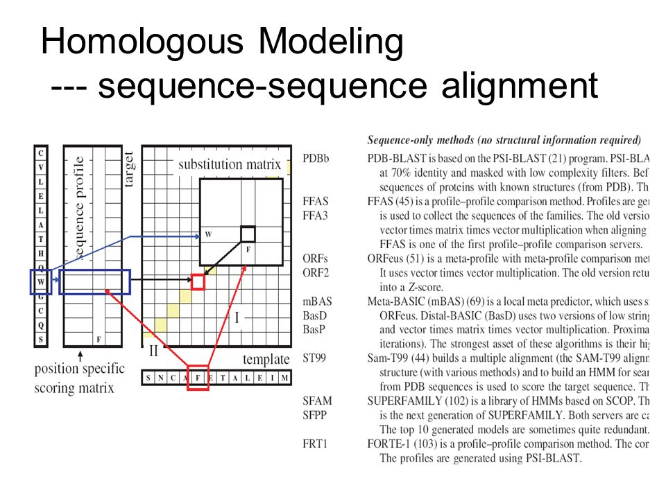 Homologous Modeling --- sequence-sequence alignment
