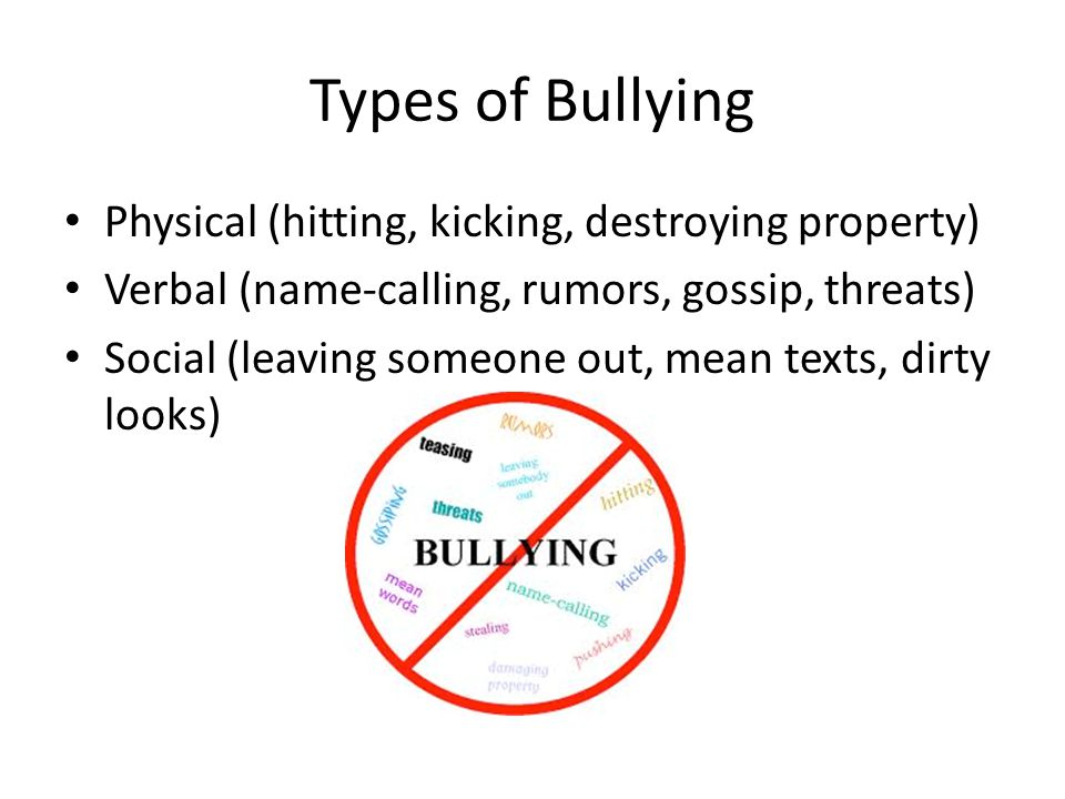 Types of Bullying Physical (hitting, kicking, destroying property) Verbal (name-calling, rumors, gossip, threats) Social (leaving someone out, mean te