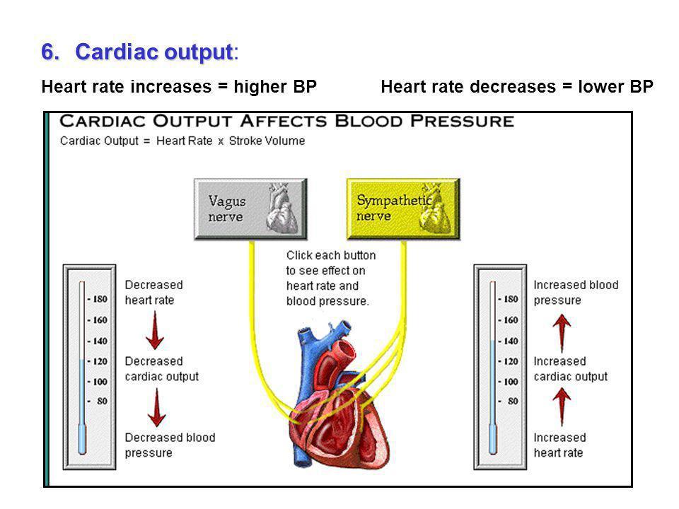 Sweat a lot = less volume/water = lower BP Eat lots of salt = more volume/water stays in body = higher BP 5.Blood volume 5.Blood volume: