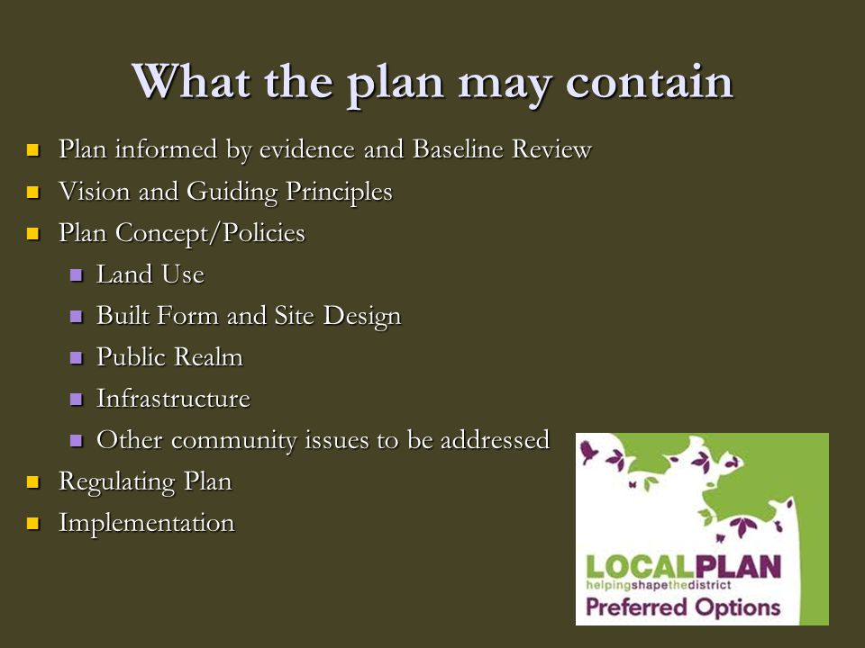 What the plan may contain Plan informed by evidence and Baseline Review Plan informed by evidence and Baseline Review Vision and Guiding Principles Vi