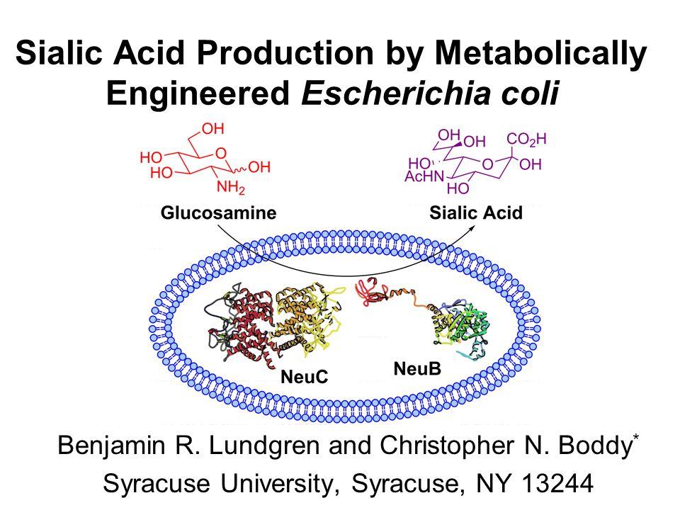 Sialic Acid Production by Metabolically Engineered Escherichia coli Benjamin R.