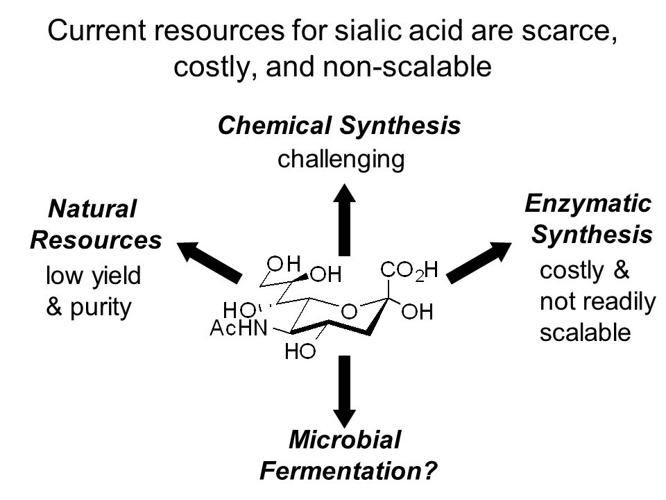 Fermentation as an alternative route in sialic acid production Low cost Scalable Can be crystallized from aqueous solutions at concentrations > 150 g/L Bacterial sialic acid metabolism is well characterized Harness the chemistry of biological pathways in bacteria to produce sialic acid