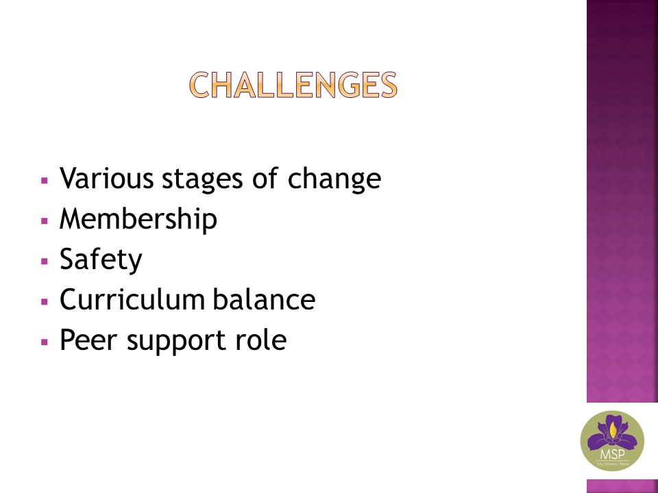  Various stages of change  Membership  Safety  Curriculum balance  Peer support role