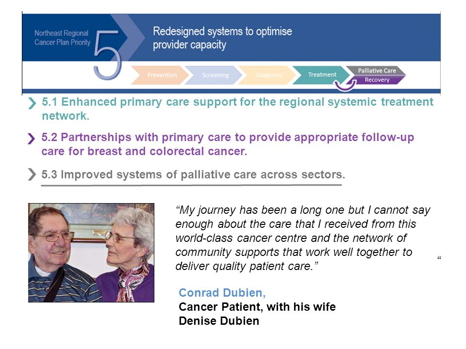 v 5.1 Enhanced primary care support for the regional systemic treatment network.