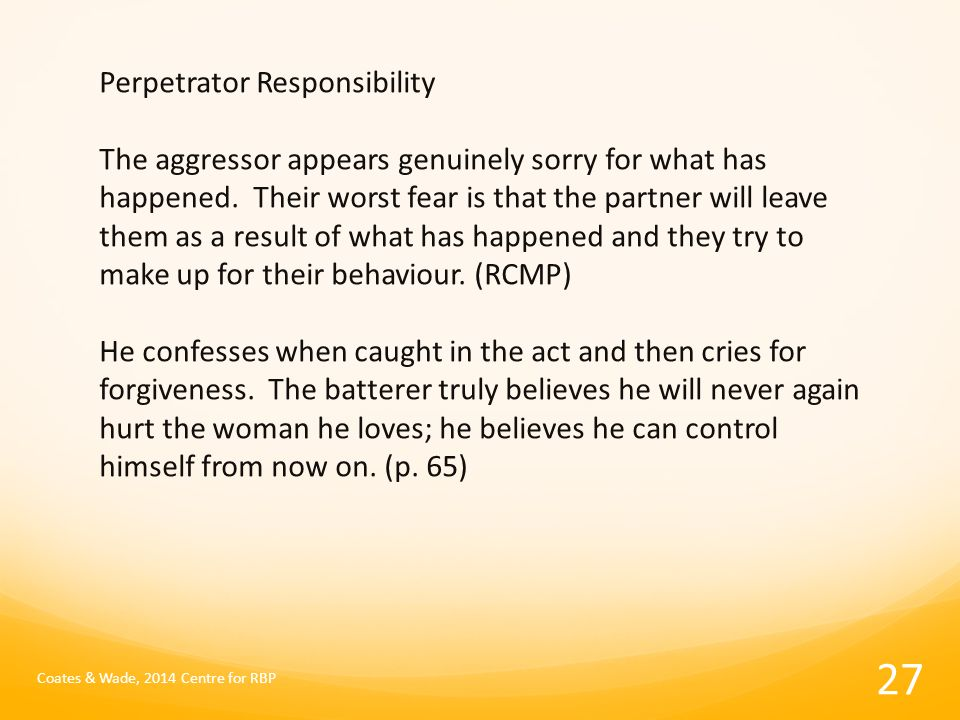 Perpetrator Responsibility The aggressor appears genuinely sorry for what has happened.