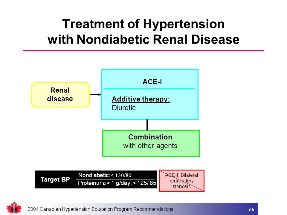 2001 Canadian Hypertension Education Program Recommendations 66 ACE-I Additive therapy: Diuretic Renal disease Combination with other agents Nondiabet