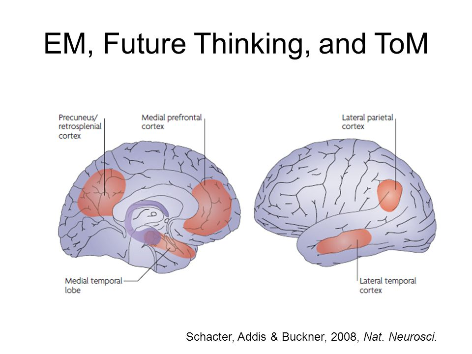 EM, Future Thinking, and ToM Schacter, Addis & Buckner, 2008, Nat. Neurosci.