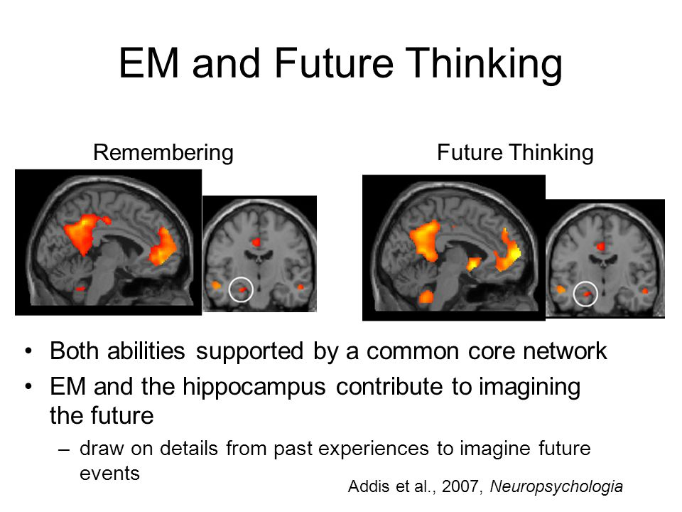 EM and Future Thinking Remembering Future Thinking Both abilities supported by a common core network EM and the hippocampus contribute to imagining the future –draw on details from past experiences to imagine future events Addis et al., 2007, Neuropsychologia