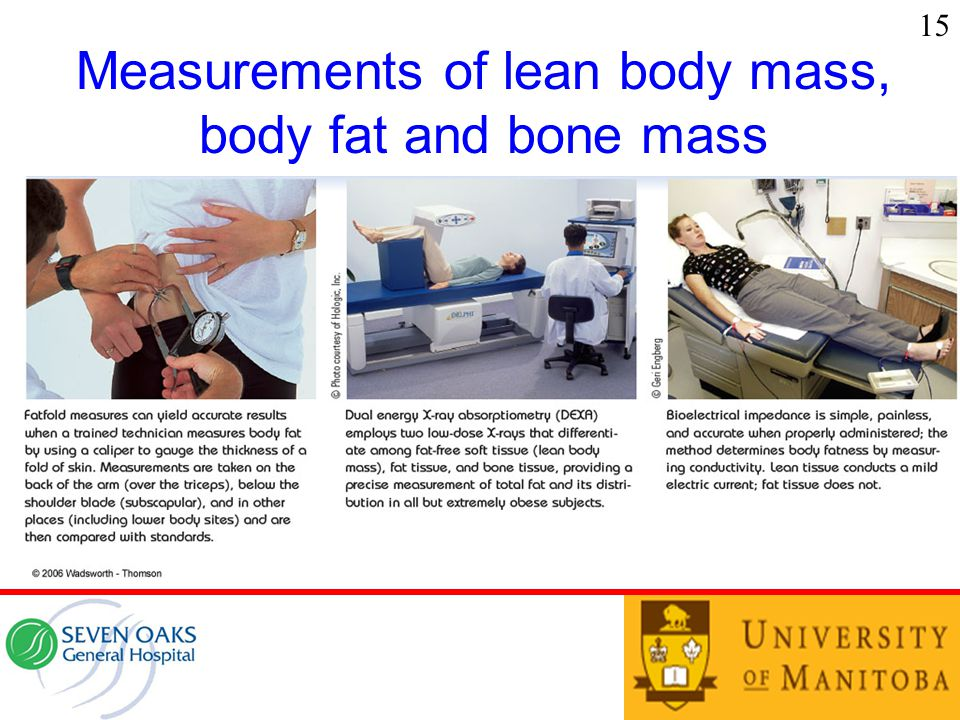 15 Measurements of lean body mass, body fat and bone mass