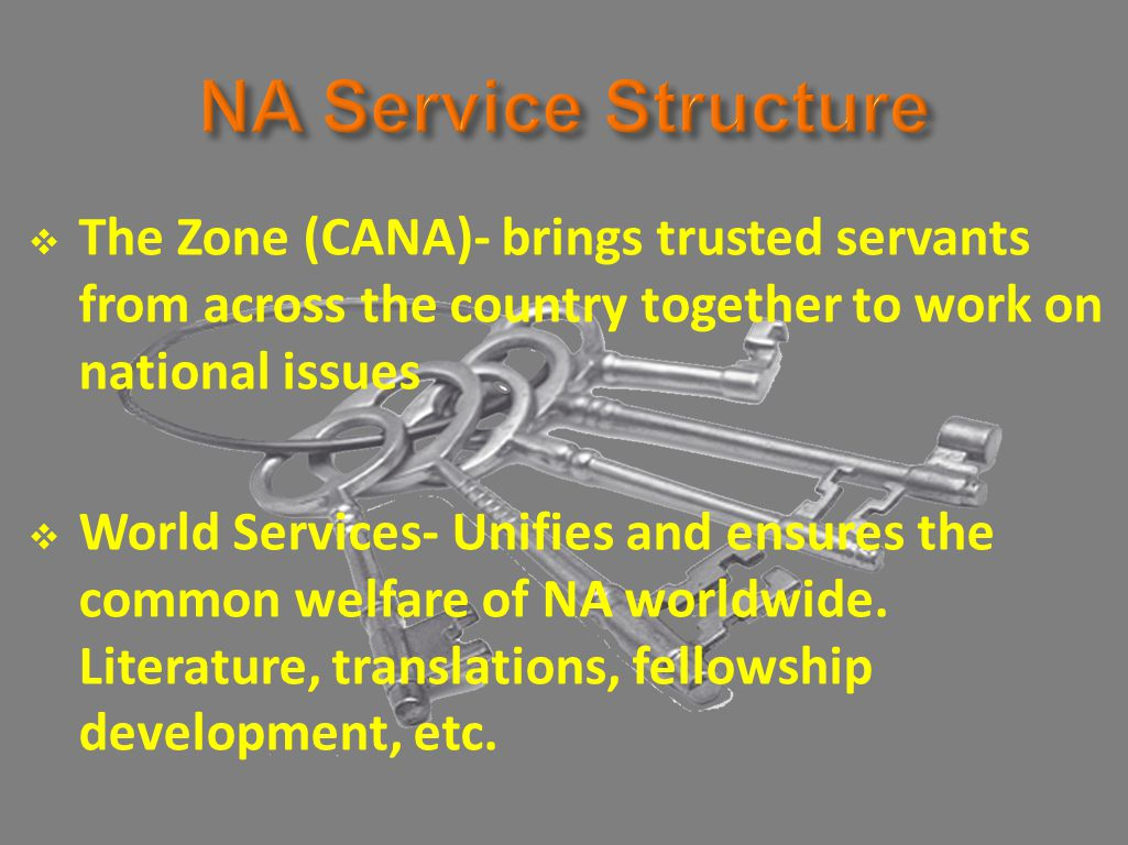  The Zone (CANA)- brings trusted servants from across the country together to work on national issues  World Services- Unifies and ensures the common welfare of NA worldwide.