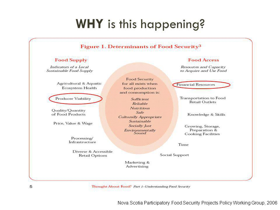 WHY is this happening Nova Scotia Participatory Food Security Projects Policy Working Group, 2006
